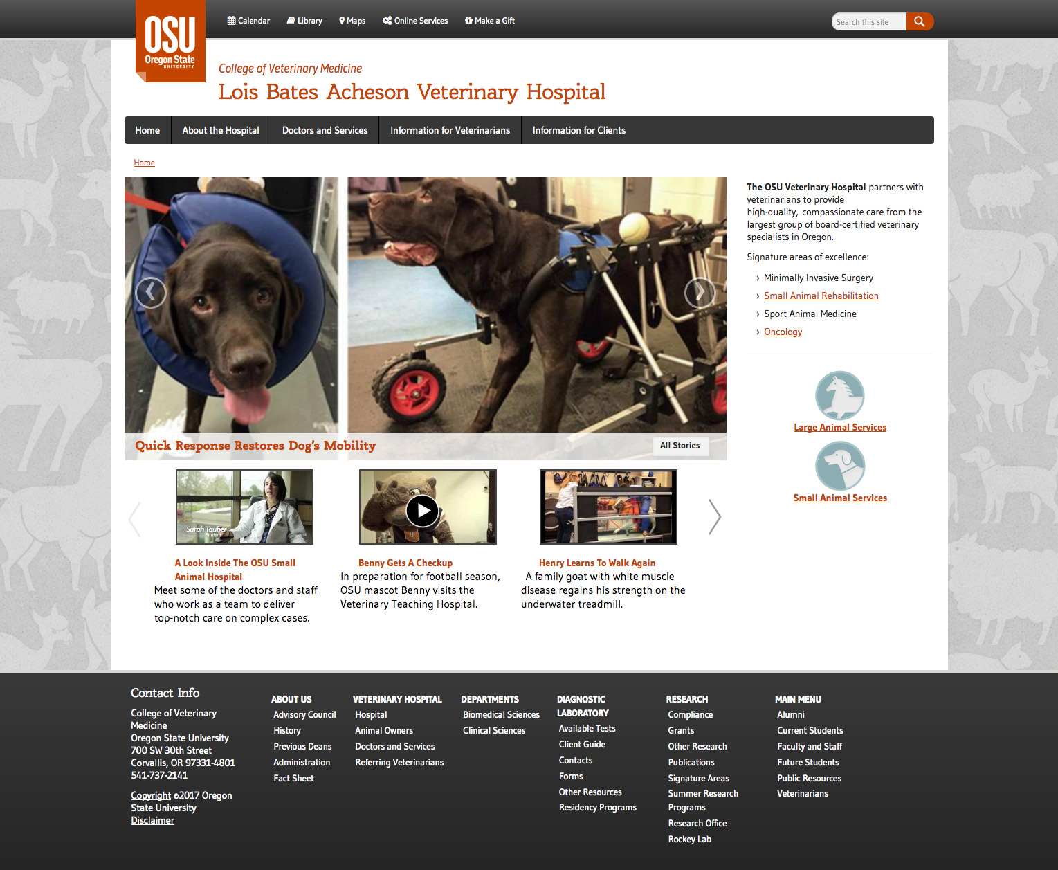 Acheson Veterinary Hospital Home Page - 2016