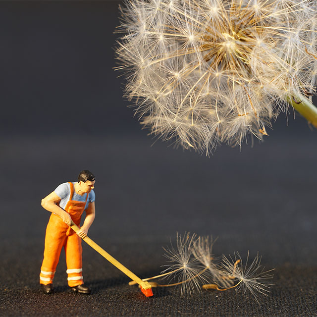 tiny figurine sweeping up dandelion blooms
