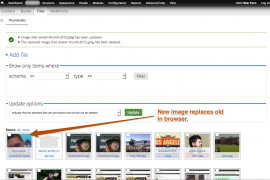 New photo displays where the old one used to in the Media Browser.